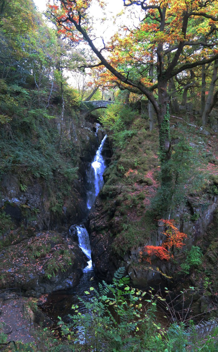 aira-force